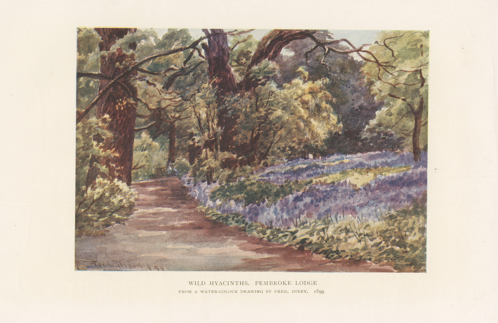 Painting of woodland path with bed of hyacinths at right.