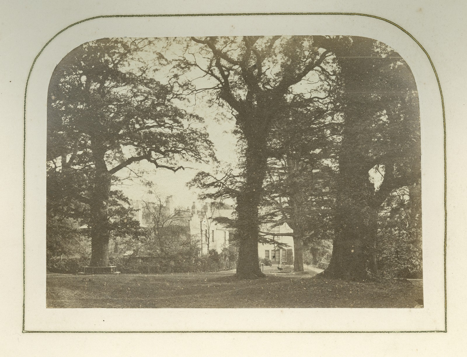 P.L. surrounded by trees, 1864